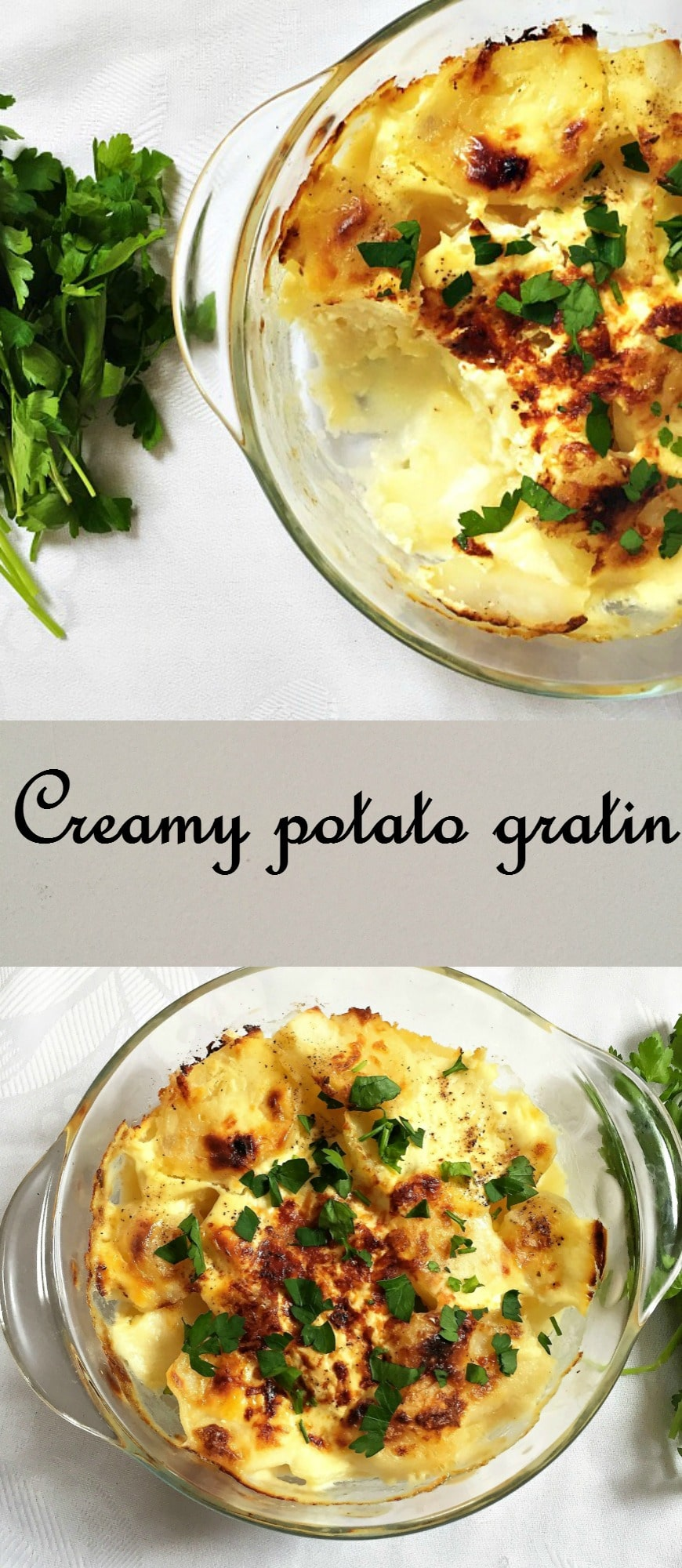 Creamy potato gratin