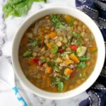 Overhead shoot of a while bowl of slow cooker lentil soup with vegetables