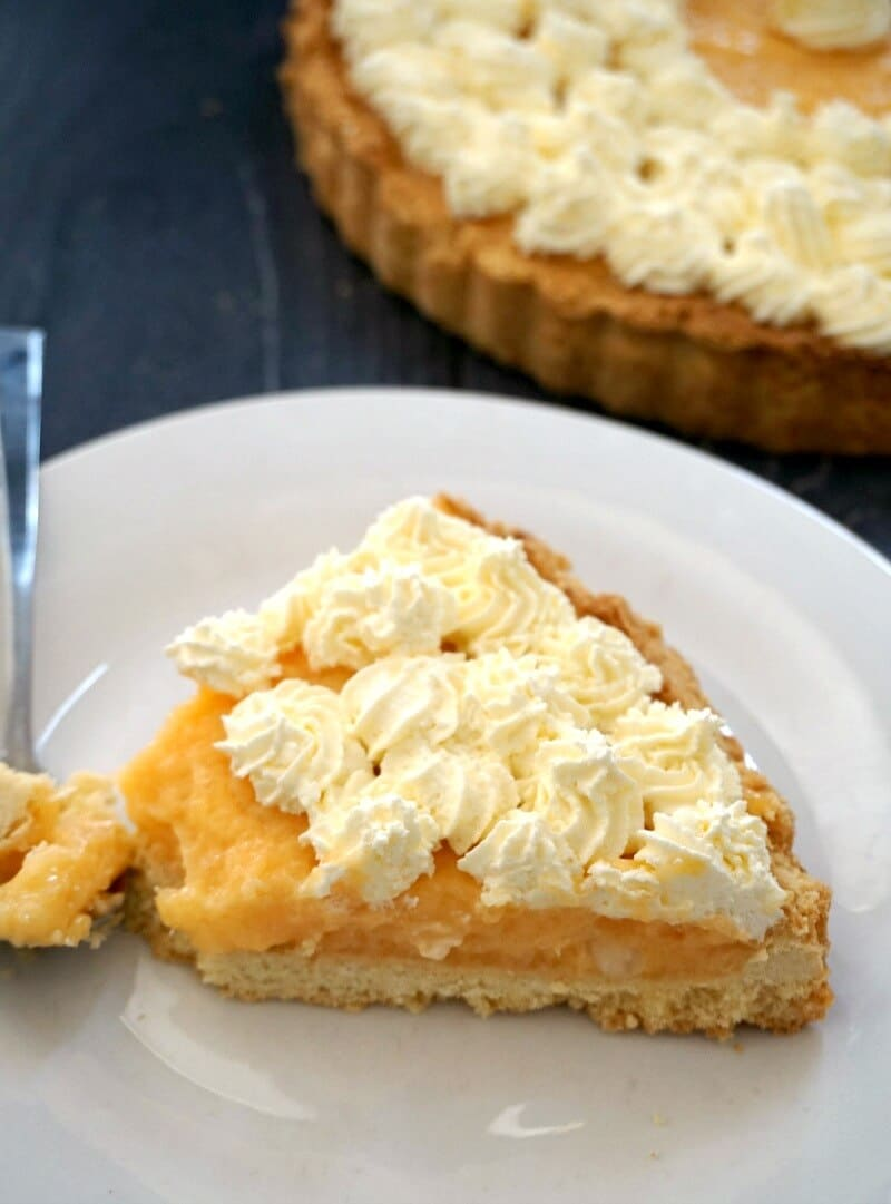 A white plate with a slice of cantaloupe pie topped with whipped cream