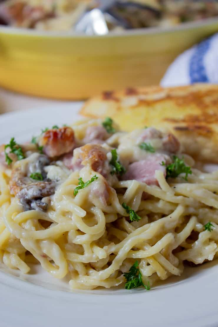 Close-up shoot of a white plate of ham tetrazzini
