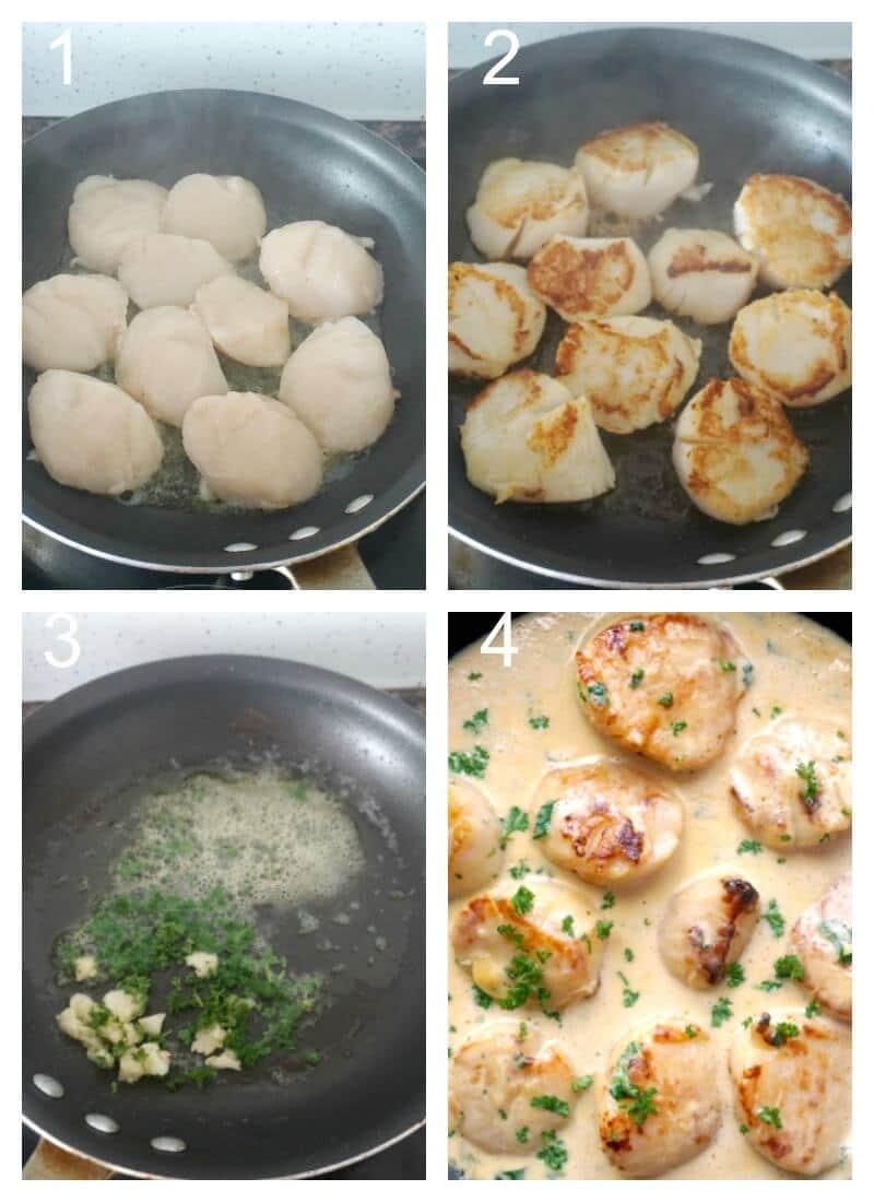 Collage of 4 photos to show how to make creamy garlic scallops