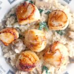 Overhead shoot of a plate with risotto and seared scallops